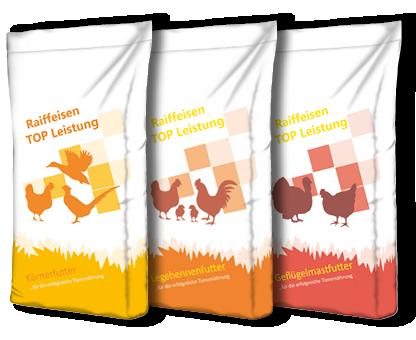 Geflügelfütterung   Raiffeisen Kraftfutterwerk Mittelweser ...